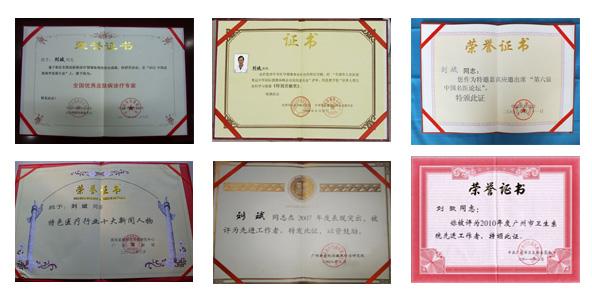 刘斌教授所获各种荣誉奖项